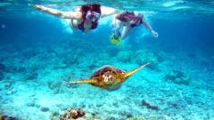 Highlight - Unforgettable Belize