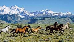Highlight - Explore Patagonia